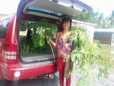 Moringa is the key to a Cancer FREE Lifestyle! Plant that Goddess please!